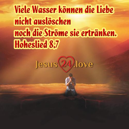 Hoheslied 8,7