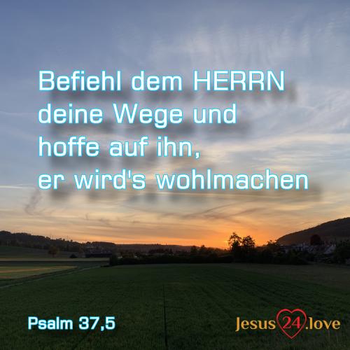Psalm 37,5